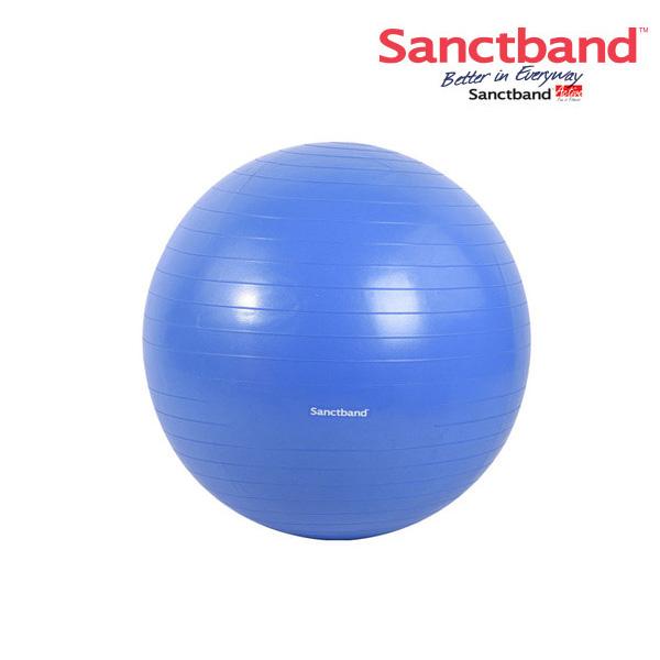 샌트 안티버스트짐볼-블루베리(75cm)