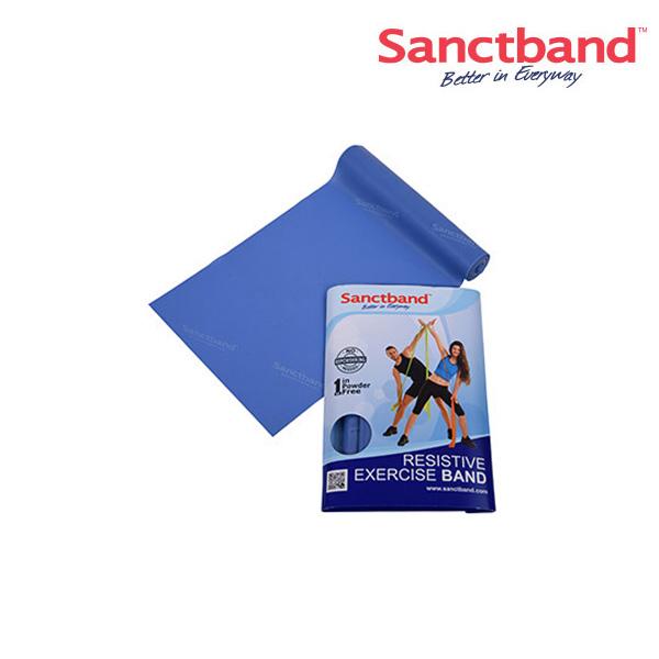 샌트밴드 2M 에코백형 Lv4-블루베리